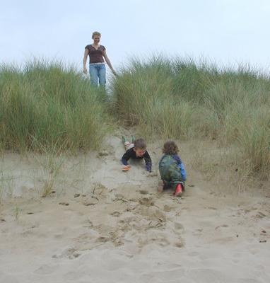 Dune, 2006